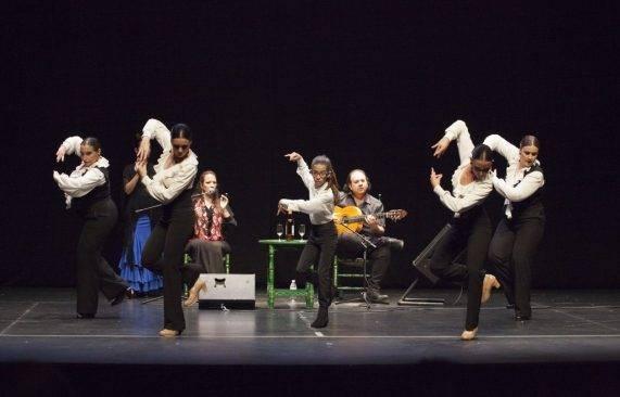 espectáculo flamenco los palacios 20