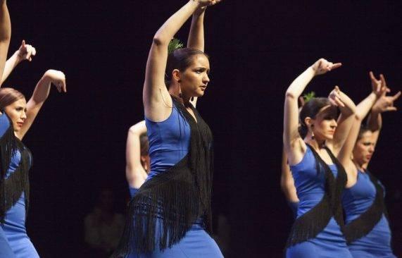 espectáculo flamenco los palacios 17