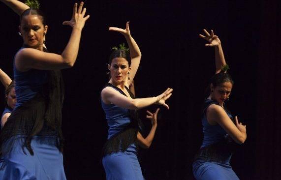 espectáculo flamenco los palacios 15