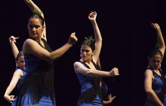 espectáculo flamenco los palacios 14