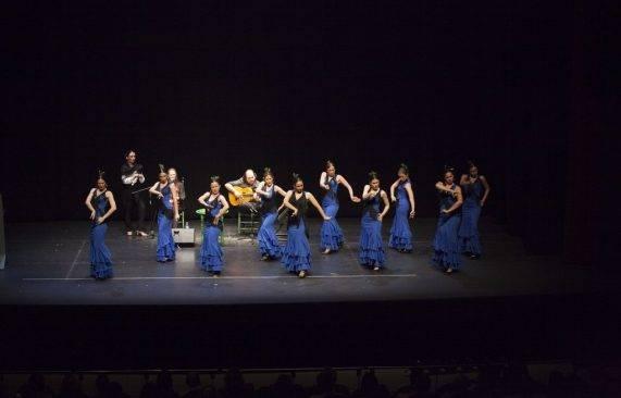 espectáculo flamenco los palacios 13