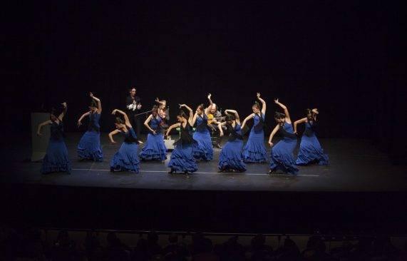 espectáculo flamenco los palacios 12