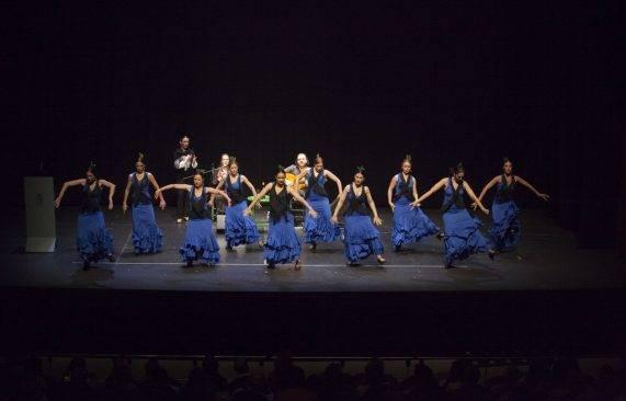 espectáculo flamenco los palacios 10