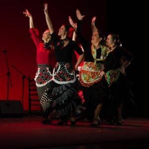 flamenco en escenarios