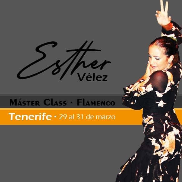 Tenerife flamenco 2019
