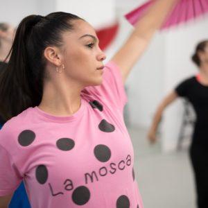 flamenco nivel profesional