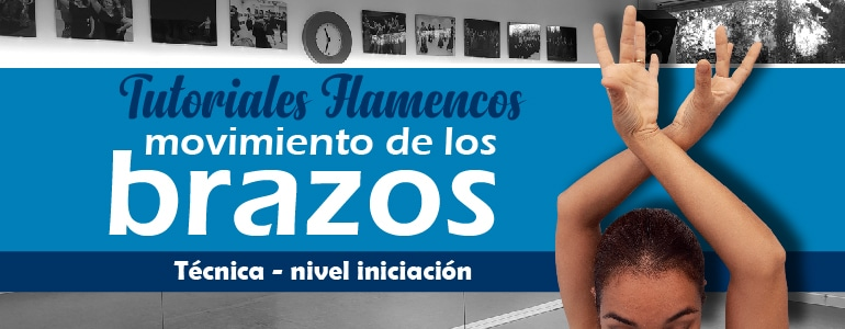 brazos en flamenco